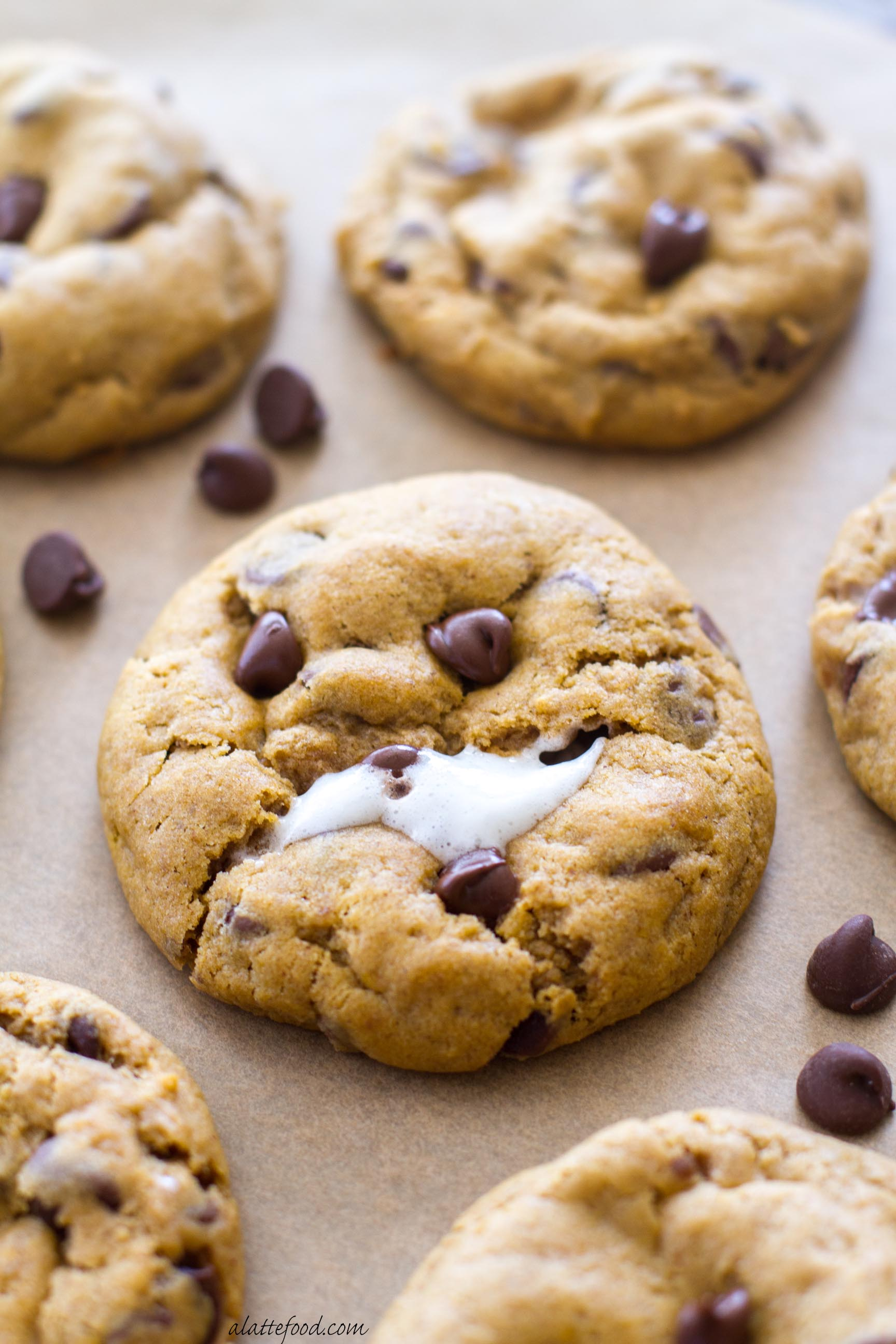 Recipe for chocolate chip marshmallow cookies